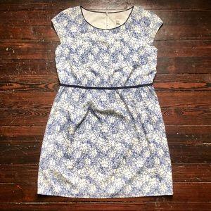 Ann Taylor Loft | Floral Dress | 14P